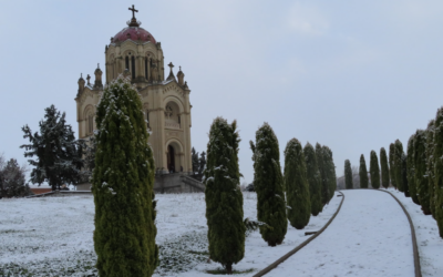 Consejos después de la gran nevada